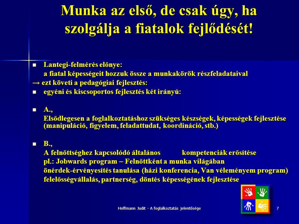Hoffmann Judit - A foglalkoztatás jelentősége7 Munka az első, de csak úgy, ha szolgálja a fiatalok fejlődését!  Lantegi-felmérés előnye: a fiatal kép