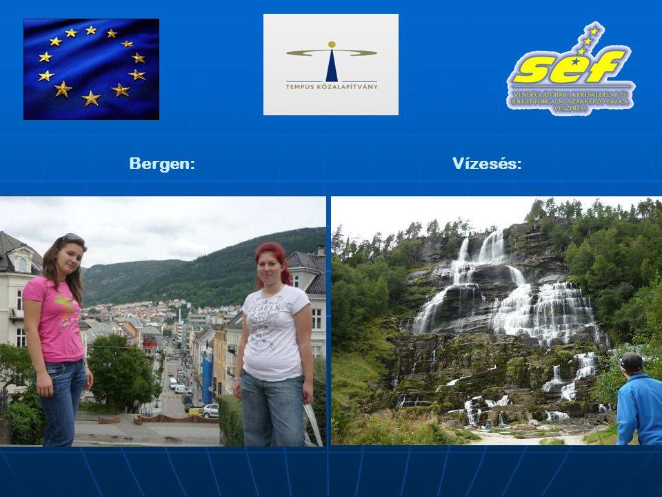 Bergen:Vízesés: