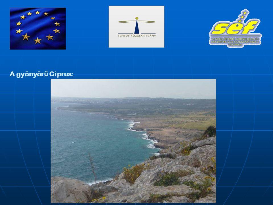 Ciprus, itt dolgozunk: