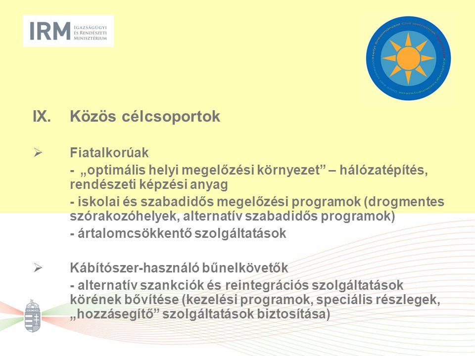 """IX.Közös célcsoportok  Fiatalkorúak -""""optimális helyi megelőzési környezet"""" – hálózatépítés, rendészeti képzési anyag - iskolai és szabadidős megelőz"""