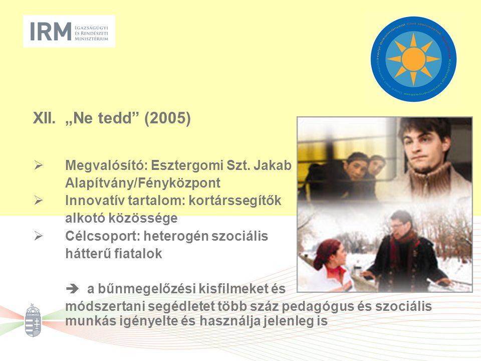 """XII.""""Ne tedd"""" (2005)  Megvalósító: Esztergomi Szt. Jakab Alapítvány/Fényközpont  Innovatív tartalom: kortárssegítők alkotó közössége  Célcsoport: h"""