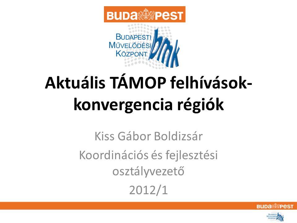 TAMOP – 3.2.12-12/1 Támogatható tevékenységek köreTámogatható tevékenységek köre • A kulturális intézmények szakembereinek át- és továbbképzését célzó, az 1/2000 (I.14.) NKÖM rendelet 2.§-nak megfelelő, a TÁMOP és TIOP keretében támogatott kulturális alapú szolgáltatásfejlesztések fenntarthatóságát és széles körű elterjesztését segítő humánerőforrás igényének biztosítása • képzéseken történő részvétel támogatása.