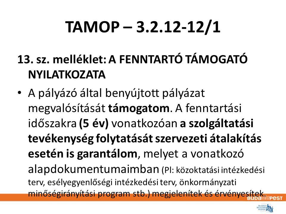 TAMOP – 3.2.12-12/1 13. sz.