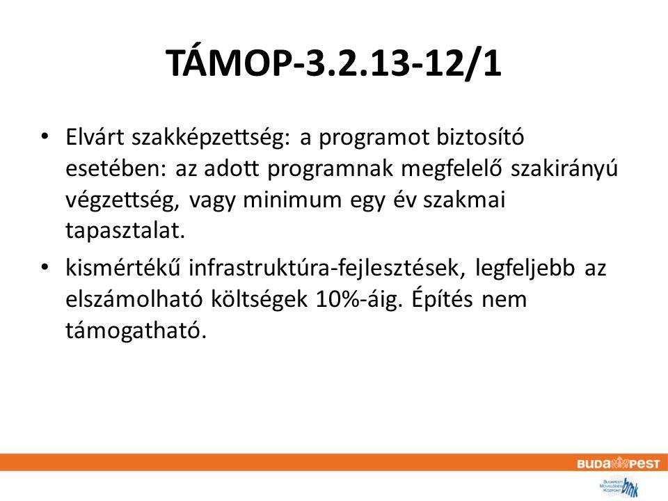 TÁMOP-3.2.13-12/1 • Elvárt szakképzettség: a programot biztosító esetében: az adott programnak megfelelő szakirányú végzettség, vagy minimum egy év szakmai tapasztalat.