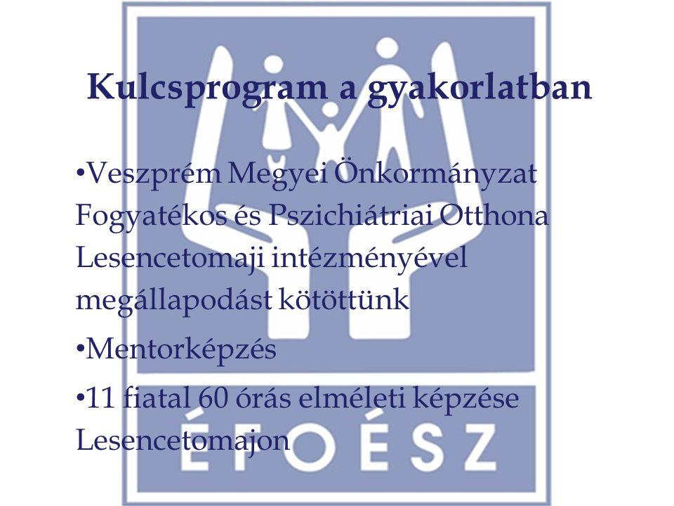Kulcsprogram a gyakorlatban • Veszprém Megyei Önkormányzat Fogyatékos és Pszichiátriai Otthona Lesencetomaji intézményével megállapodást kötöttünk • M