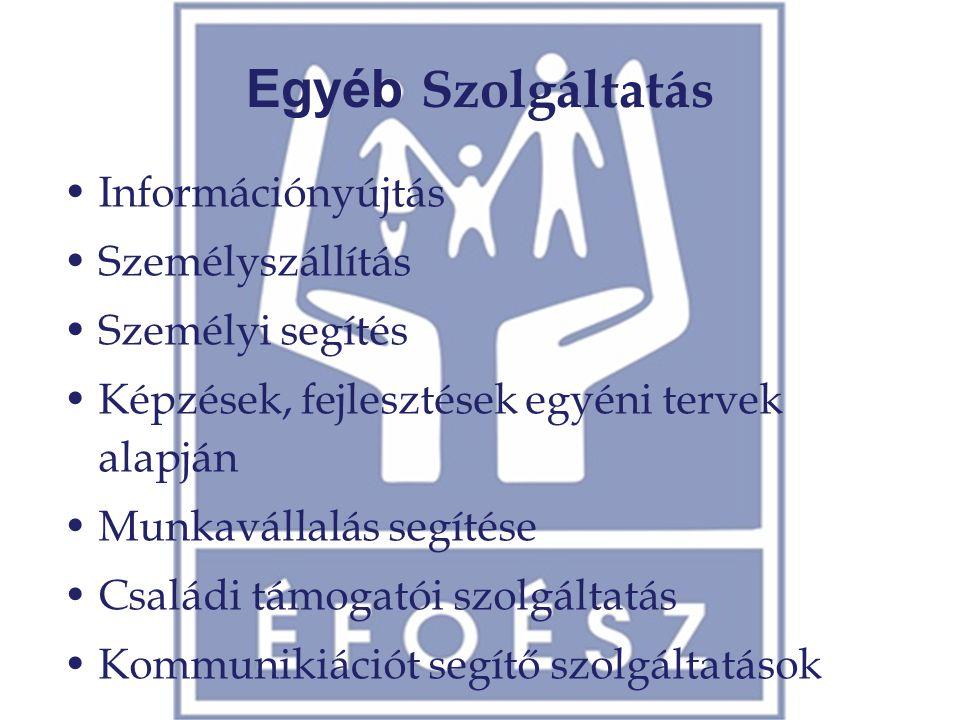 Egyéb Szolgáltatás •Információnyújtás •Személyszállítás •Személyi segítés •Képzések, fejlesztések egyéni tervek alapján •Munkavállalás segítése •Csalá