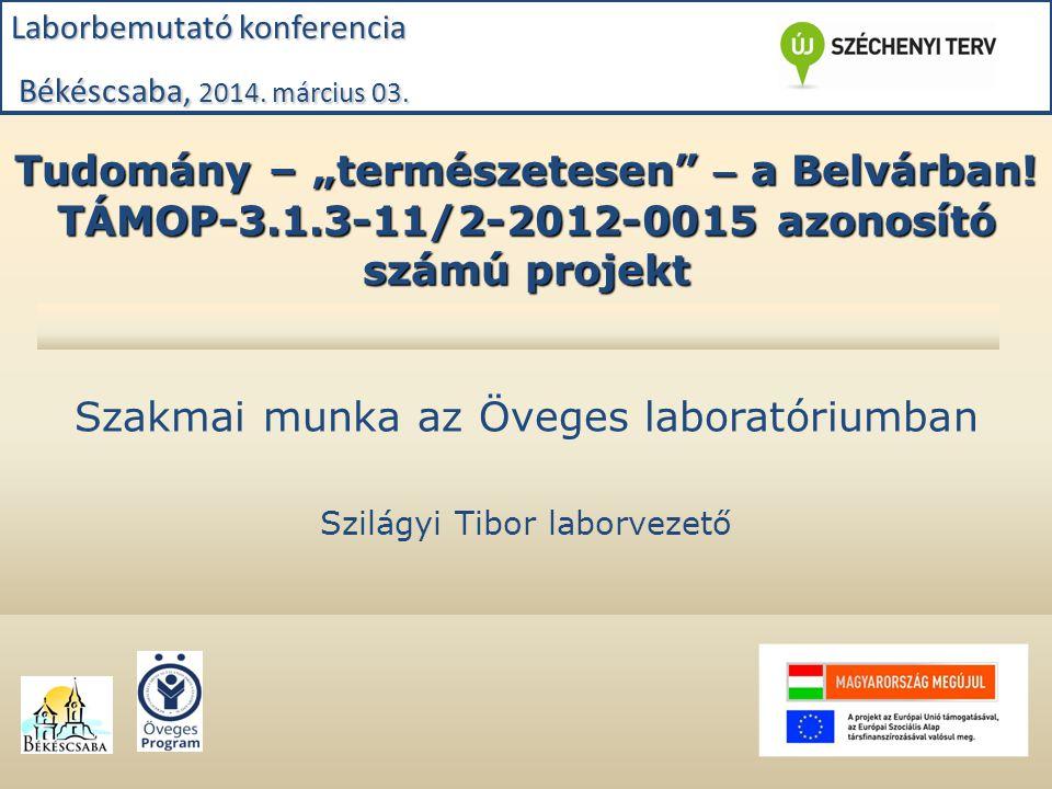 """Tudomány – """"természetesen"""" – a Belvárban! TÁMOP-3.1.3-11/2-2012-0015 azonosító számú projekt Szakmai munka az Öveges laboratóriumban Szilágyi Tibor la"""
