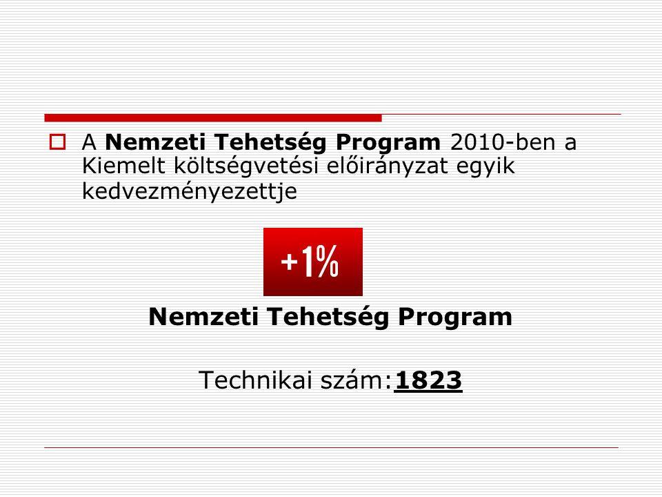  A Nemzeti Tehetség Program 2010-ben a Kiemelt költségvetési előirányzat egyik kedvezményezettje Nemzeti Tehetség Program Technikai szám:1823