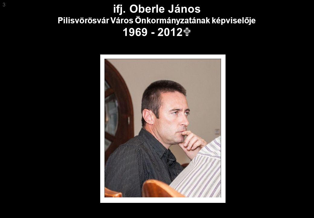 ifj. Oberle János Pilisvörösvár Város Önkormányzatának képviselője 1969 - 2012  3
