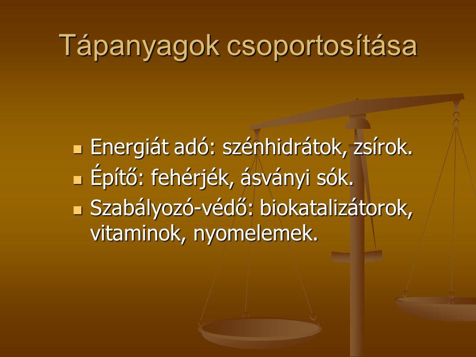 Tápanyagok csoportosítása  Energiát adó: szénhidrátok, zsírok.  Építő: fehérjék, ásványi sók.  Szabályozó-védő: biokatalizátorok, vitaminok, nyomel