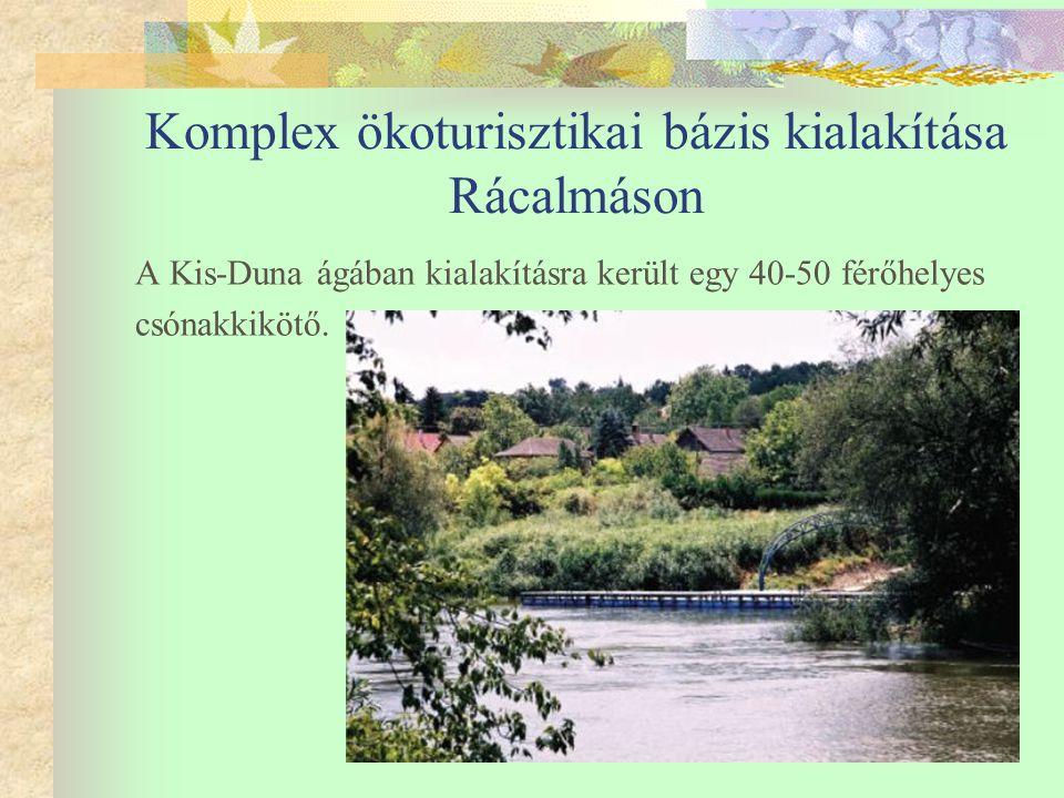 Komplex ökoturisztikai bázis kialakítása Rácalmáson A Kis-Duna ágában kialakításra került egy 40-50 férőhelyes csónakkikötő.