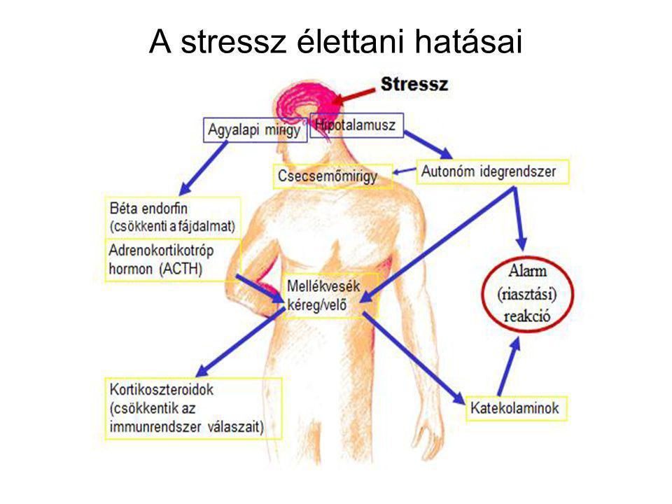"""A stresszválaszt befolyásoló tényezők •Akadályozó tényezők: - rossz kognitív helyzetértékelés - negatív beállítódás, magas elvárási szint - """"tanult tehetetlenség , korábbi tapasztalatok - családi minta - ellenségesség - társas támogatás hiánya - életcélok feladása, """"vitális kimerültség"""