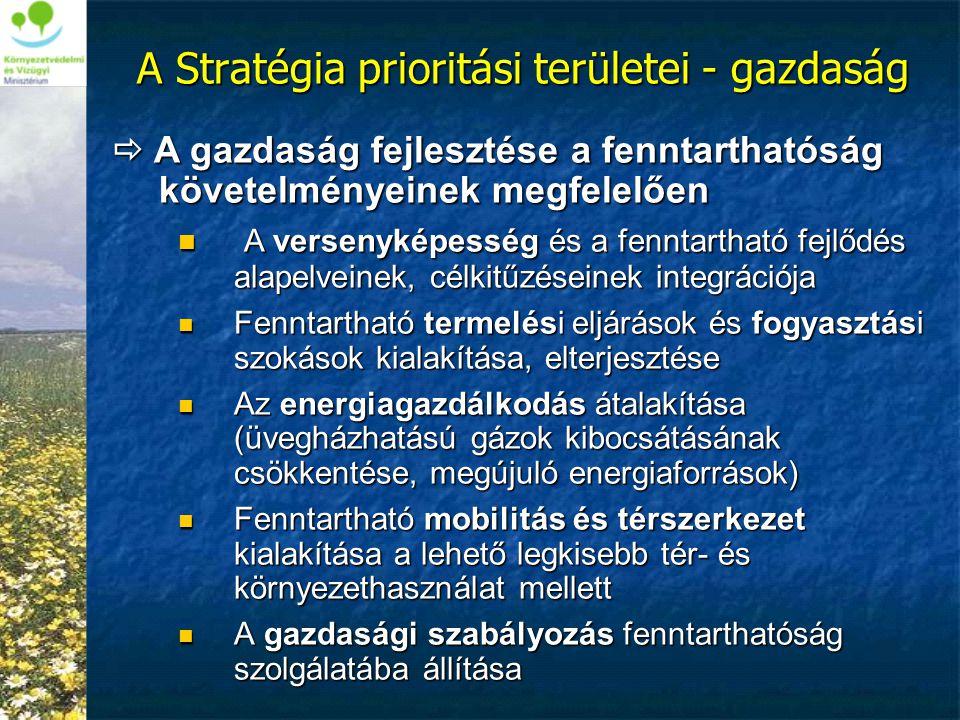  A gazdaság fejlesztése a fenntarthatóság követelményeinek megfelelően  A versenyképesség és a fenntartható fejlődés alapelveinek, célkitűzéseinek i