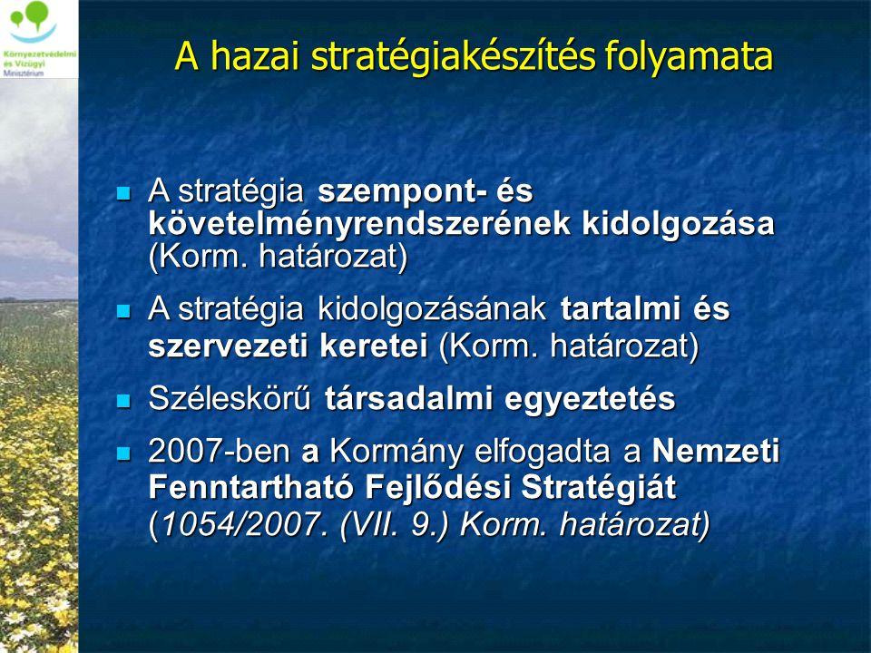 A hazai stratégiakészítés folyamata  A stratégia szempont- és követelményrendszerének kidolgozása (Korm. határozat)  A stratégia kidolgozásának tart