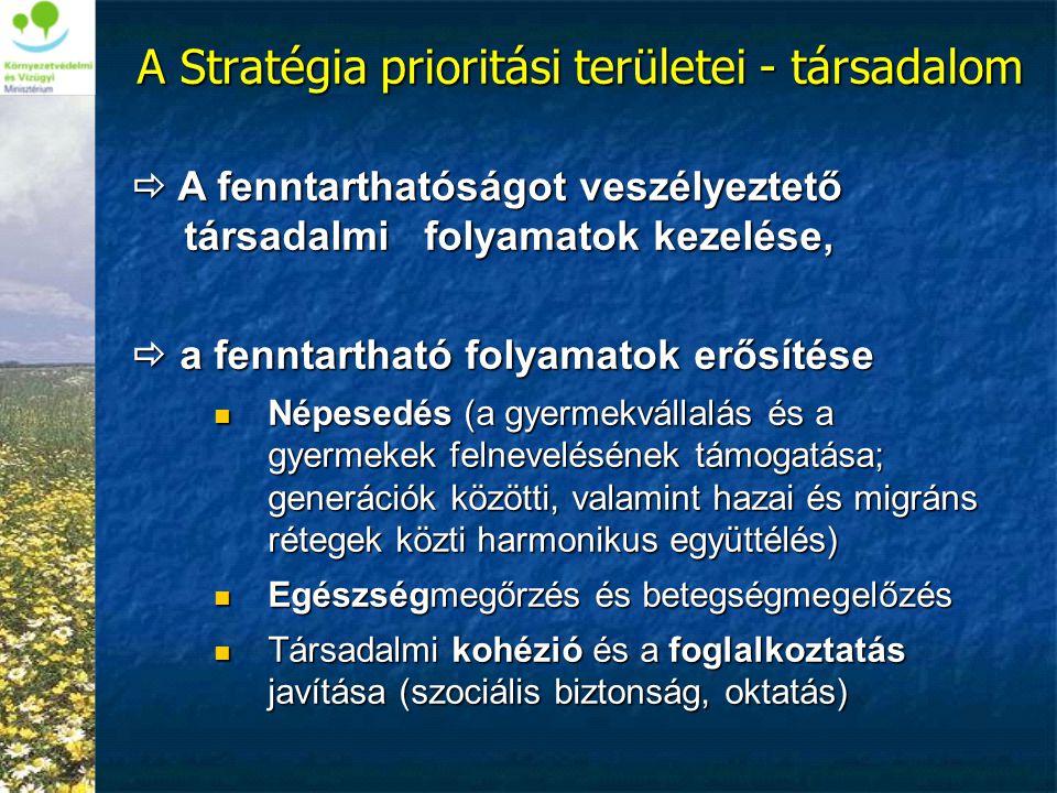 A Stratégia prioritási területei - társadalom  A fenntarthatóságot veszélyeztető társadalmi folyamatok kezelése,  a fenntartható folyamatok erősítés