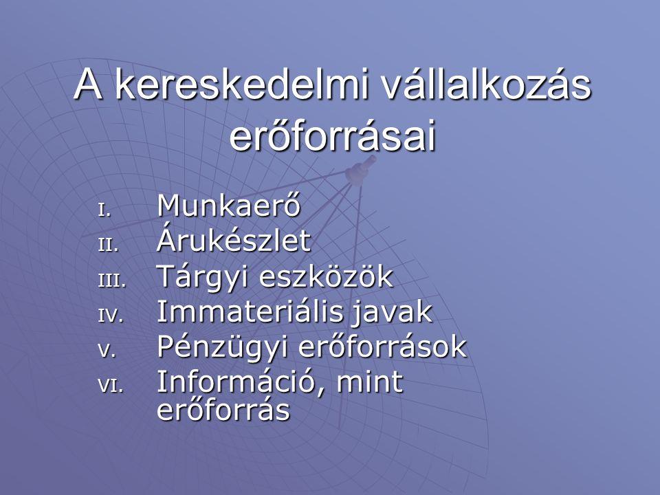 A kereskedelmi vállalkozás erőforrásai I. Munkaerő II. Árukészlet III. Tárgyi eszközök IV. Immateriális javak V. Pénzügyi erőforrások VI. Információ,