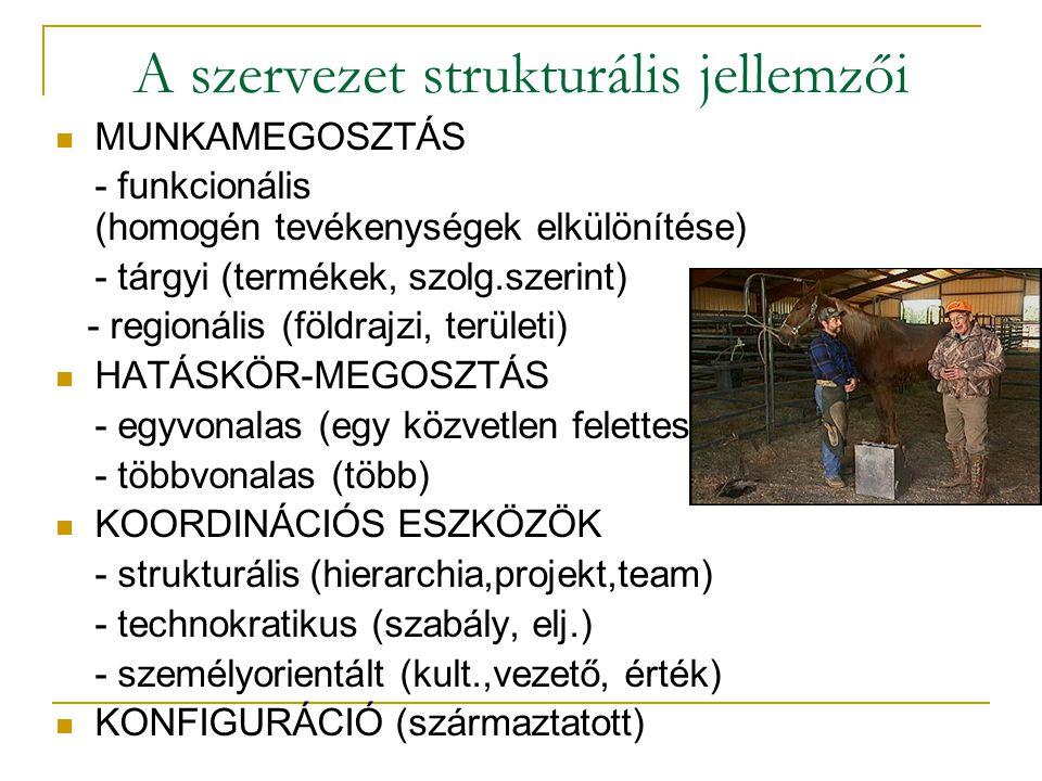 A szervezet strukturális jellemzői  MUNKAMEGOSZTÁS - funkcionális (homogén tevékenységek elkülönítése) - tárgyi (termékek, szolg.szerint) - regionáli