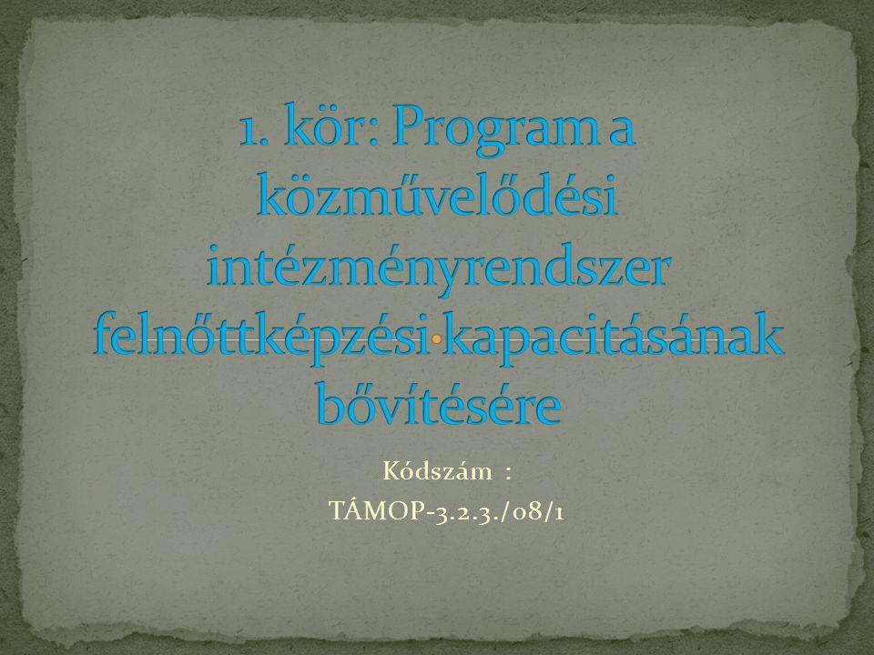 Kódszám : TÁMOP-3.2.3./08/1