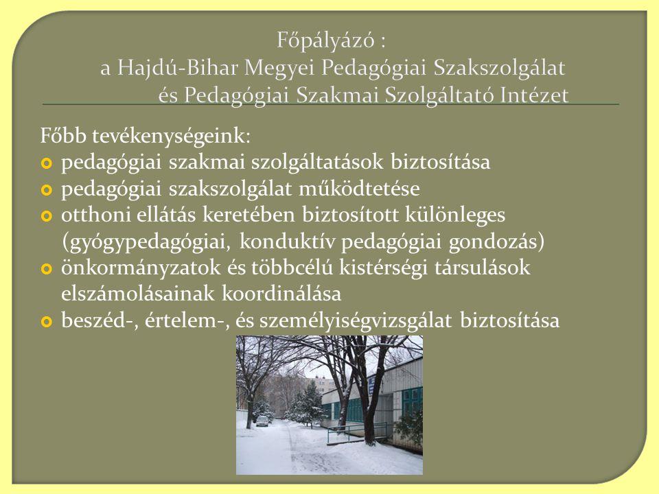 Főpályázó : a Hajdú-Bihar Megyei Pedagógiai Szakszolgálat és Pedagógiai Szakmai Szolgáltató Intézet Főbb tevékenységeink:  pedagógiai szakmai szolgáltatások biztosítása  pedagógiai szakszolgálat működtetése  otthoni ellátás keretében biztosított különleges (gyógypedagógiai, konduktív pedagógiai gondozás)  önkormányzatok és többcélú kistérségi társulások elszámolásainak koordinálása  beszéd-, értelem-, és személyiségvizsgálat biztosítása