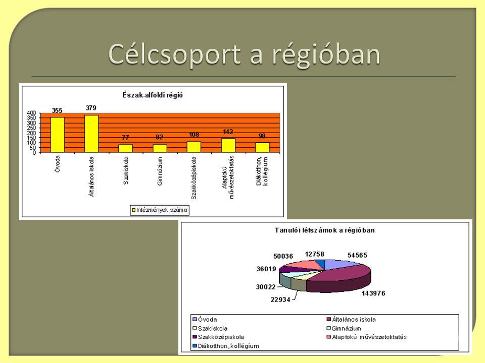  Szabolcs-Szatmár-Bereg Megyei Önkormányzat Megyei Pedagógiai, Közművelődési és Képzési Intézete : • a helyi programiroda működtetése • helyi és megyei szintű koordináció ellátása • helyi és megyei szintű kapcsolattartás • főpályázó munkájának támogatása • a releváns szakmai és pénzügyi tervek megvalósítása