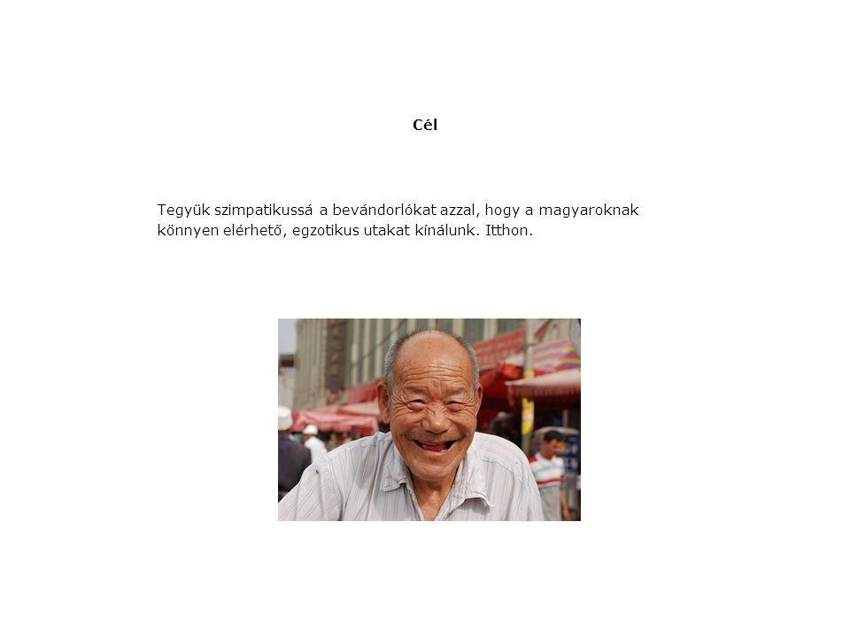Megoldás www.vilagutazasitthon.hu