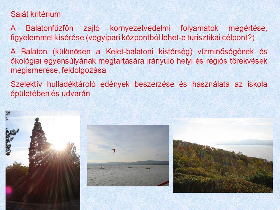 Saját kritérium A Balatonfűzfőn zajló környezetvédelmi folyamatok megértése, figyelemmel kísérése (vegyipari központból lehet-e turisztikai célpont?)