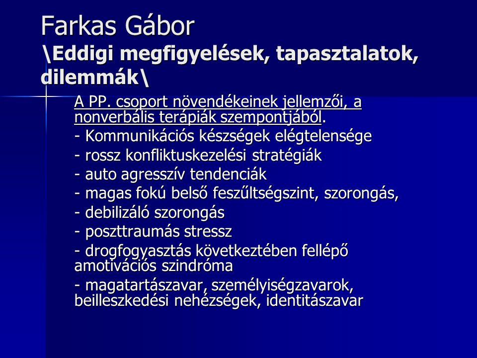 Farkas Gábor \Eddigi megfigyelések, tapasztalatok, dilemmák\ A PP.