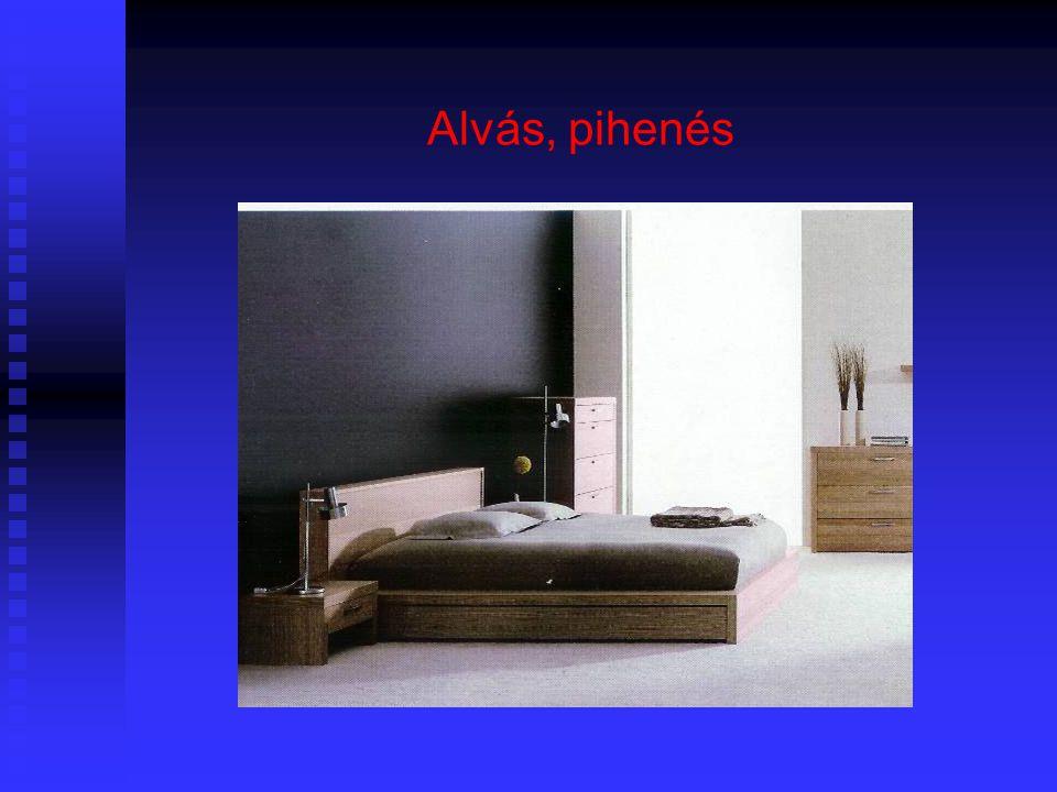 12 Tervezési szempontok  2 férőhelyesnél nagyobb lakásoknál nem kerülhet az étkező olyan helyiségbe, amely valamelyik használó alvóhelye  Az étkező