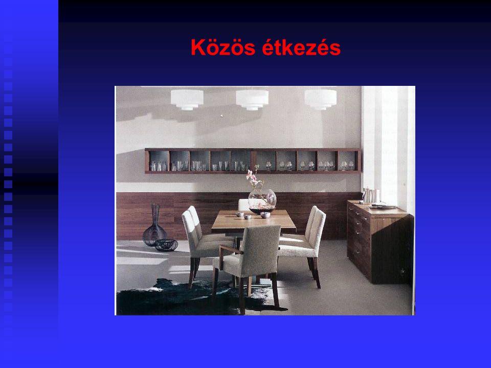 7 Minimális térigény  A közös időtöltés és vendégfogadás tere legyen kellően tágas, megengedett legkisebb alapterülete 17 m2 (OTÉK), de nyomatékosan