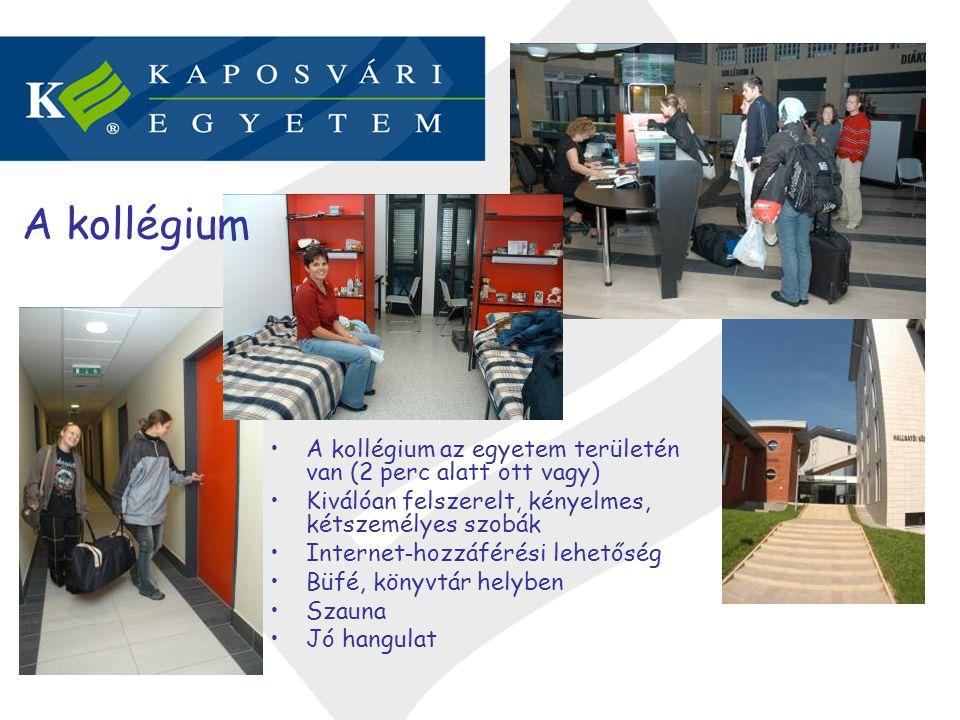 Érzékenyítés A gyógypedagógus hallgatók gyakorlata / önkéntes munkája a Kaposi Mór Oktató Kórházban -Pszichiátriai Osztály -Csecsemő- és Gyermekosztály