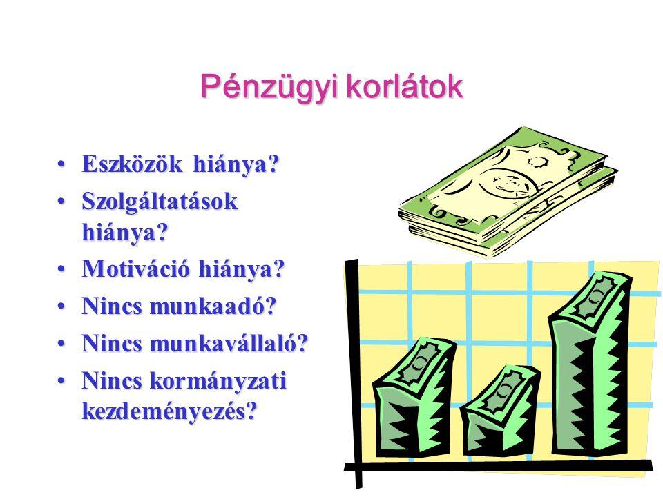 Pénzügyi korlátok •Eszközök hiánya? •Szolgáltatások hiánya? •Motiváció hiánya? •Nincs munkaadó? •Nincs munkavállaló? •Nincs kormányzati kezdeményezés?