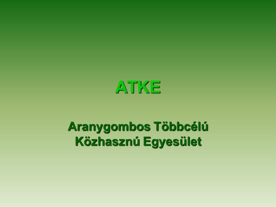 ATKE Aranygombos Többcélú Közhasznú Egyesület
