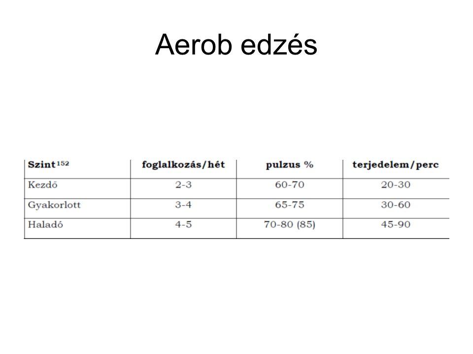 Aerob edzés