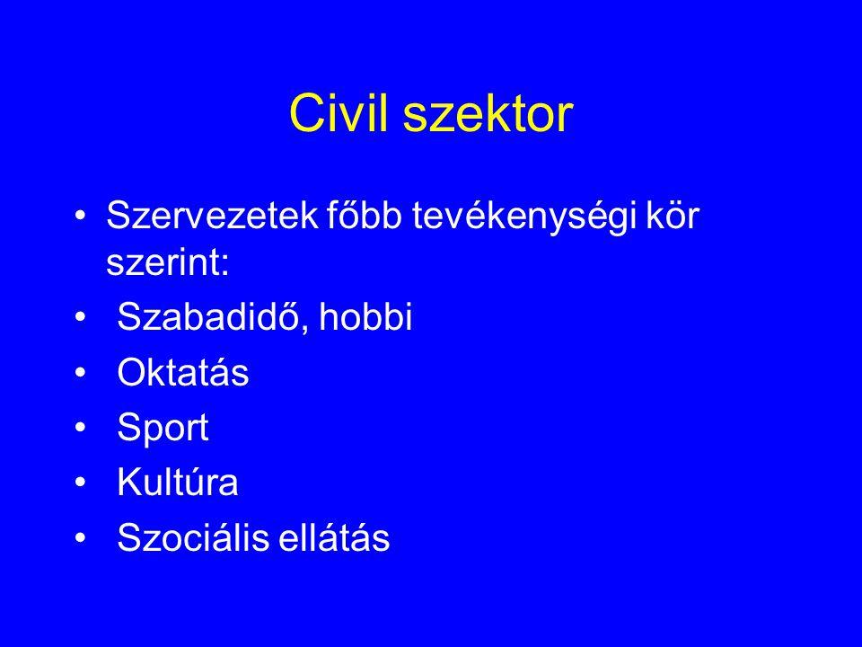 Civil szektor •Szervezetek főbb tevékenységi kör szerint: • Szabadidő, hobbi • Oktatás • Sport • Kultúra • Szociális ellátás