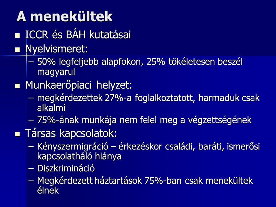A menekültek  ICCR és BÁH kutatásai  Nyelvismeret: –50% legfeljebb alapfokon, 25% tökéletesen beszél magyarul  Munkaerőpiaci helyzet: –megkérdezett