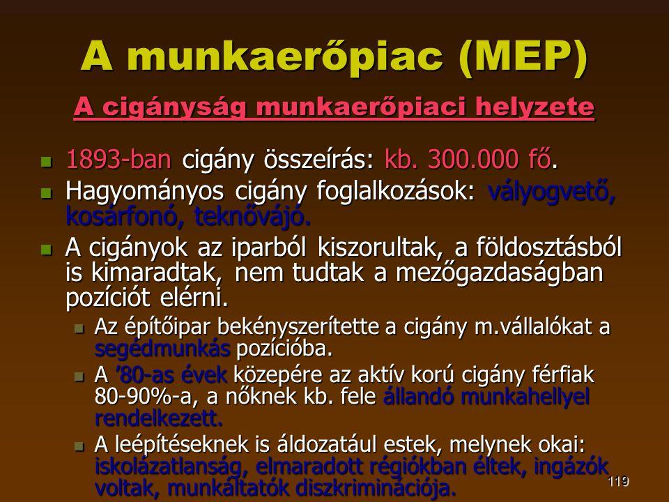 119 A munkaerőpiac (MEP) A cigányság munkaerőpiaci helyzete  1893-ban cigány összeírás: kb. 300.000 fő.  Hagyományos cigány foglalkozások: vályogvet