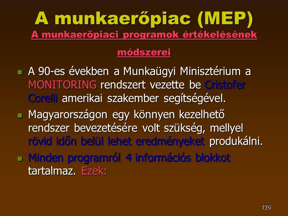 126 A munkaerőpiac (MEP) A munkaerőpiaci programok értékelésének módszerei  A 90-es években a Munkaügyi Minisztérium a MONITORING rendszert vezette b