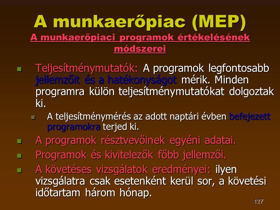 127 A munkaerőpiac (MEP) A munkaerőpiaci programok értékelésének módszerei  Teljesítménymutatók: A programok legfontosabb jellemzőit és a hatékonyságot mérik.