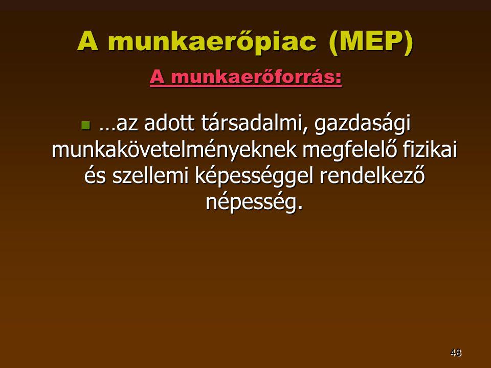 48 A munkaerőpiac (MEP) A munkaerőforrás:  …az adott társadalmi, gazdasági munkakövetelményeknek megfelelő fizikai és szellemi képességgel rendelkező népesség.