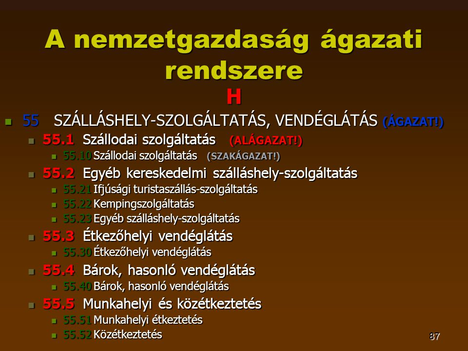 87 A nemzetgazdaság ágazati rendszere H  55 SZÁLLÁSHELY-SZOLGÁLTATÁS, VENDÉGLÁTÁS (ÁGAZAT!)  55.1 Szállodai szolgáltatás (ALÁGAZAT!)  55.10 Szállo