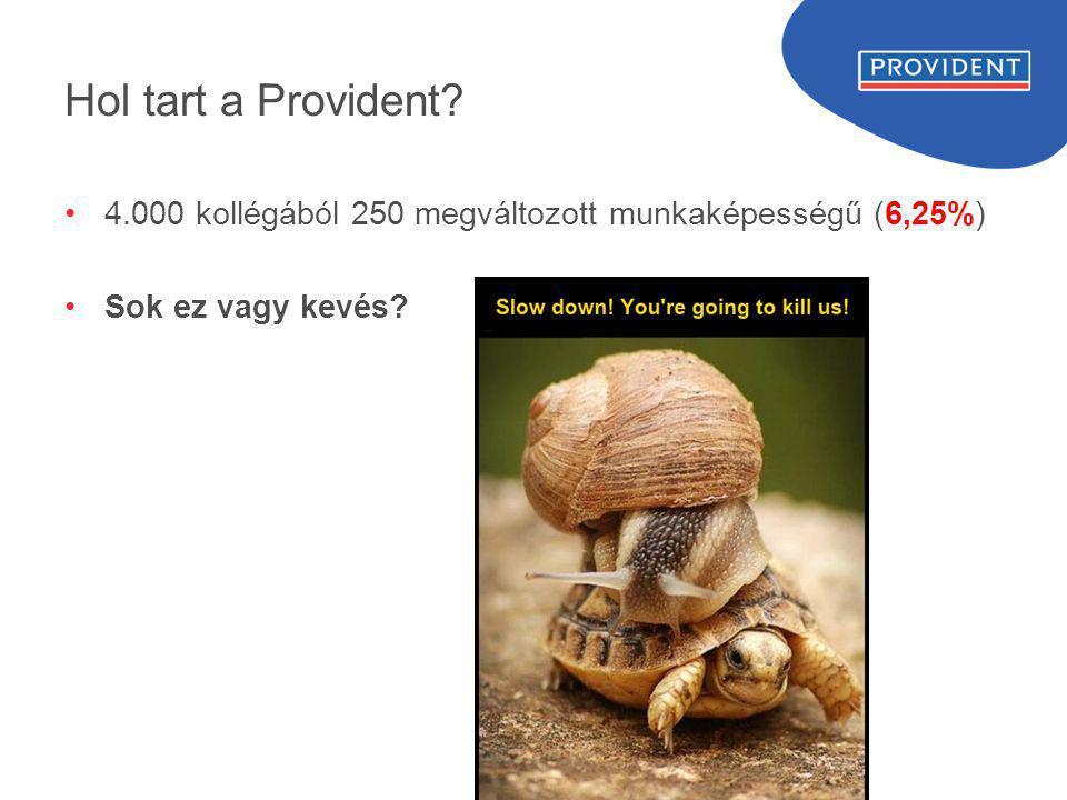 Hol tart a Provident? •4.000 kollégából 250 megváltozott munkaképességű (6,25%) •Sok ez vagy kevés?