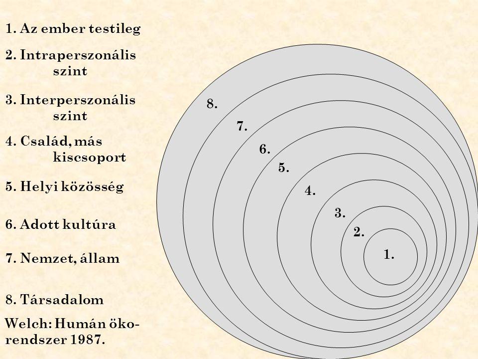 1. 1. Az ember testileg 2. 3. 4. 5. 6. 7. 2. Intraperszonális szint 3. Interperszonális szint 4. Család, más kiscsoport 5. Helyi közösség 6. Adott kul