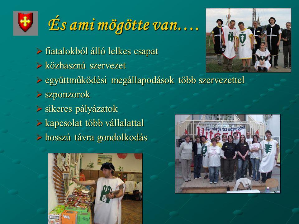 Vitézlő szakmai elismertsége A Magyar Sportturisztikai Szövetség elismerése: A Vitézlő 2009-ben a Nemzeti Bajnokság része előző évhez hasonlóan a következő kategóriákban.