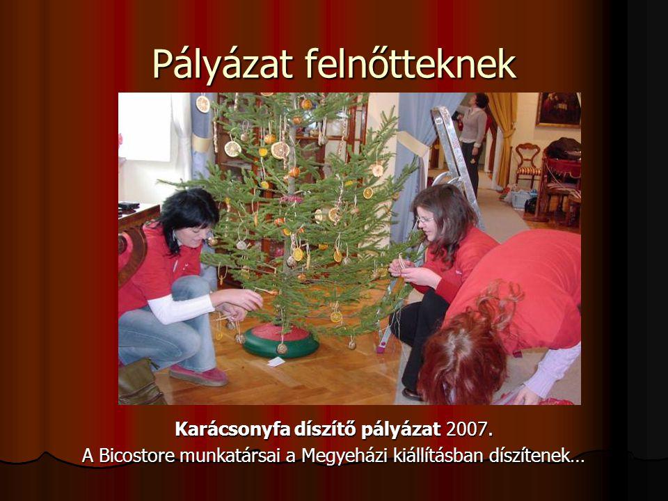 Pályázat felnőtteknek Karácsonyfa díszítő pályázat 2007. A Bicostore munkatársai a Megyeházi kiállításban díszítenek…