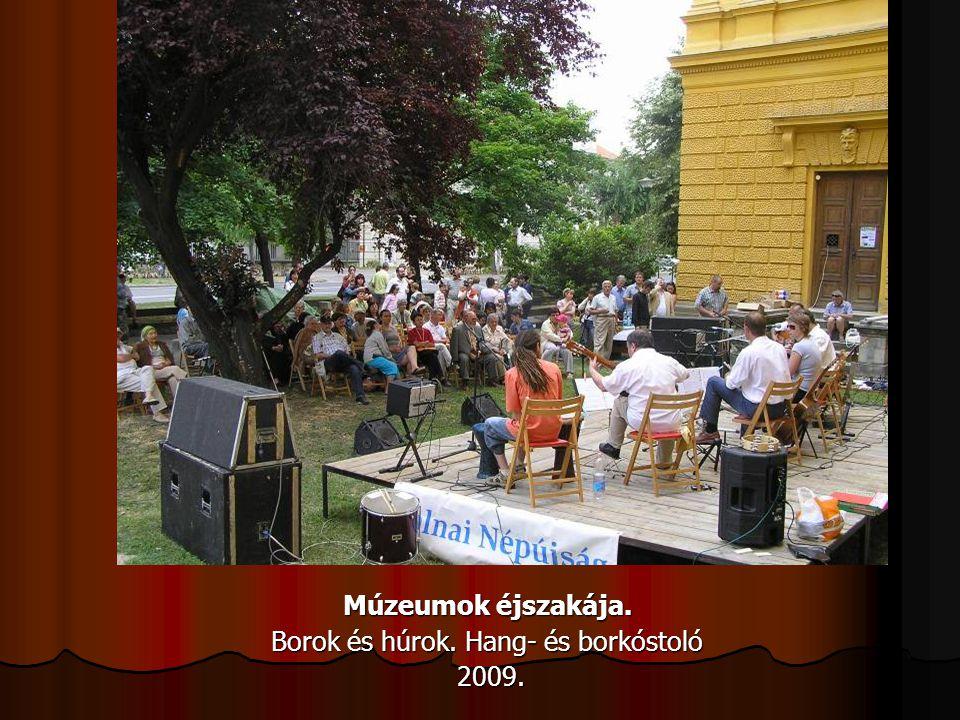 Múzeumok éjszakája. Borok és húrok. Hang- és borkóstoló 2009. 2009.