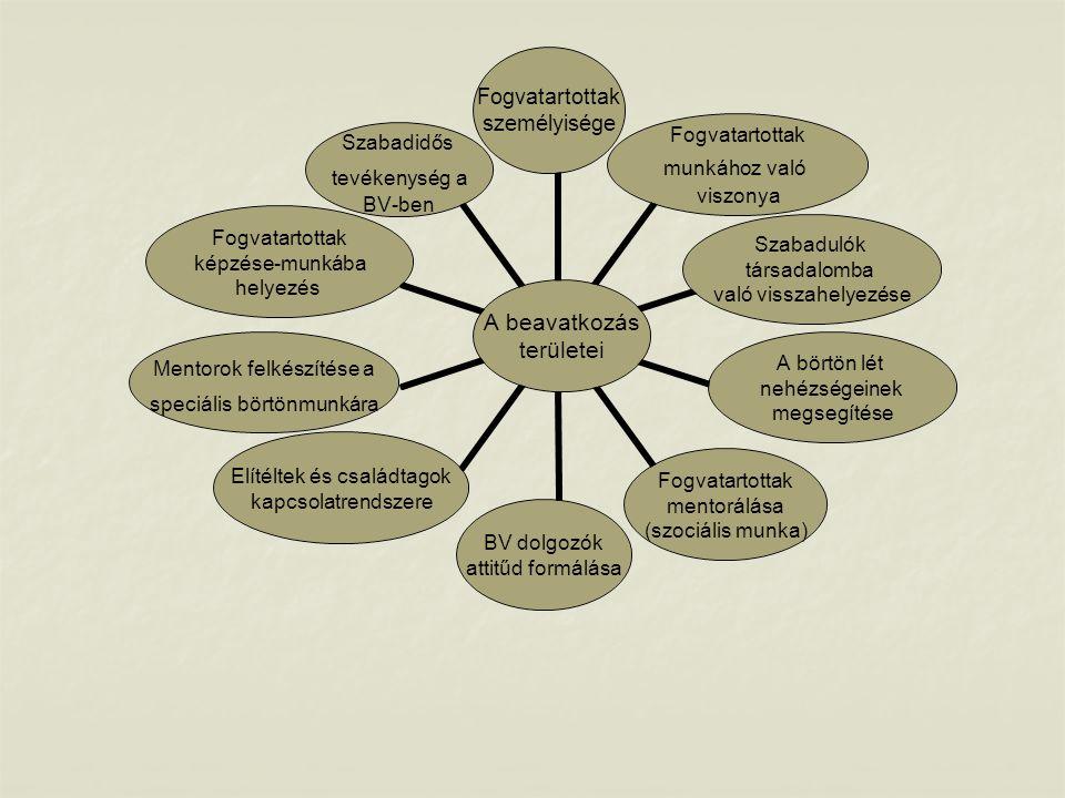 Állapotfelmérés - a BV intézetekben dolgozó pszichológusok, valamint szociális szakemberek (mentorok) végzik el - képességfeltárás - agressziókezelésre vonatkozó tesztfelvétel - személyes klinikai interjú (életvitel, családi kapcsolatok, munkára motiváltság) - a pszichológiai tesztek eredménye, valamint a klinikai interjú adatai alapján egyéni fejlesztési terv készítése