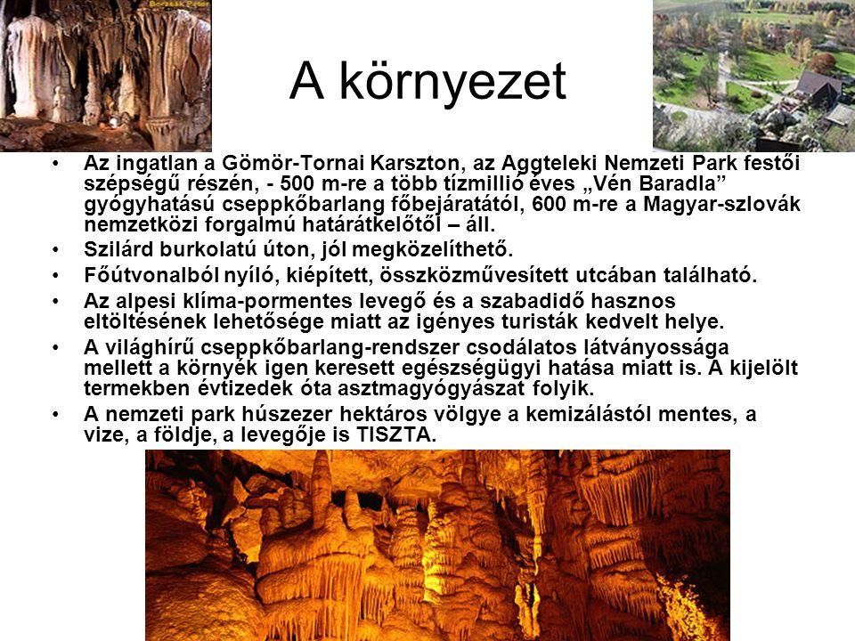 """A környezet •Az ingatlan a Gömör-Tornai Karszton, az Aggteleki Nemzeti Park festői szépségű részén, - 500 m-re a több tízmillió éves """"Vén Baradla gyógyhatású cseppkőbarlang főbejáratától, 600 m-re a Magyar-szlovák nemzetközi forgalmú határátkelőtől – áll."""