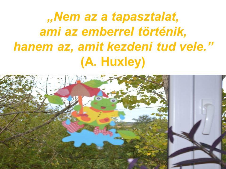 """""""Nem az a tapasztalat, ami az emberrel történik, hanem az, amit kezdeni tud vele."""" (A. Huxley)"""