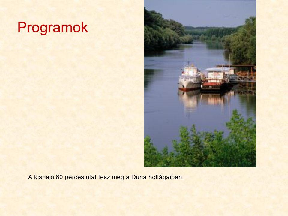 Programok A kishajó 60 perces utat tesz meg a Duna holtágaiban.