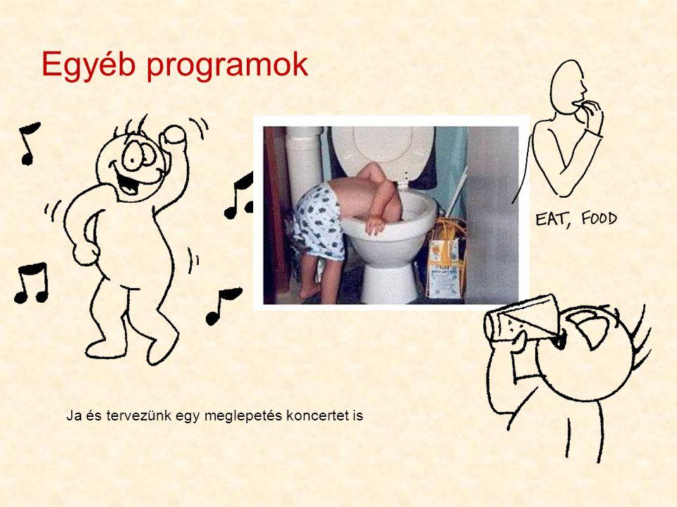 Egyéb programok Ja és tervezünk egy meglepetés koncertet is